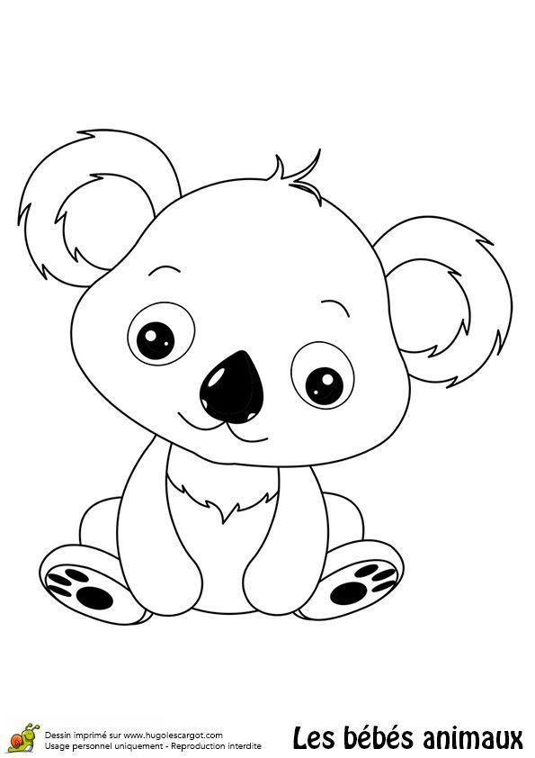 Coloriage bébé koala - Hugolescargot.com