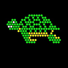 This is one of my favorites on litebritesforlearning.com: Lite Brite Refill: Under The Sea (SQUARE)