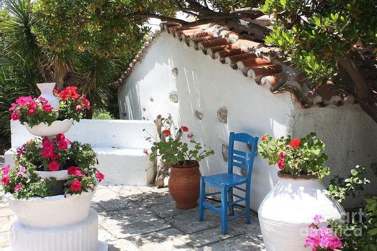 http://images.fineartamerica.com/images-medium-large/my-greek-garden-yvonne-ayoub.jpg