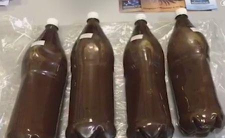 В аэропорту Домодедово задержали шамана с 1,5 кг. наркотиков - Сайт города…