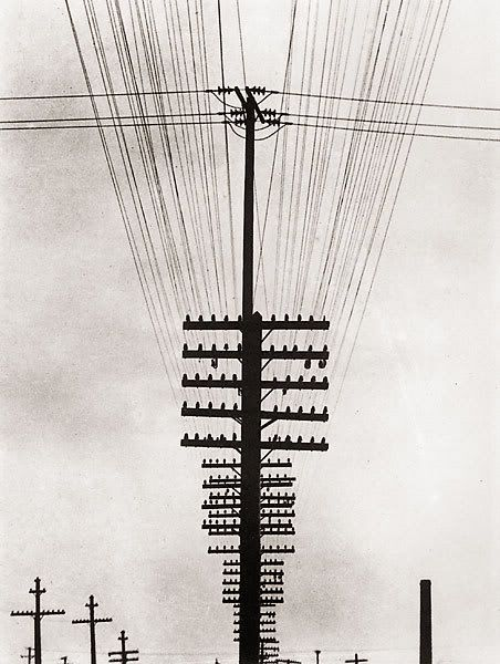 Tina Modotti (1896 - 1942)  There is straight and diagonal lines, in the poles. The line looks strong and stretchy.