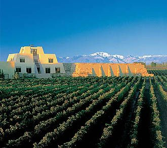 wine country of argentina - Google Search