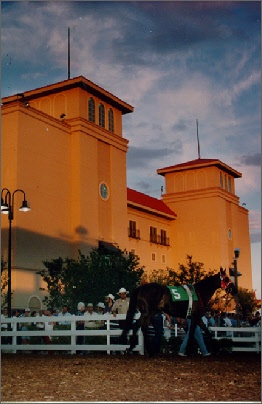 Retama Park horse races. They have pony rides, a petting zoo, face painting, snow cones....