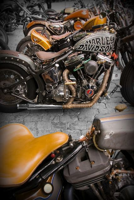 two softail bobbers