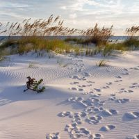 69 Free and Cheap Things to Do in Pensacola Beach, FL | TripBuzz
