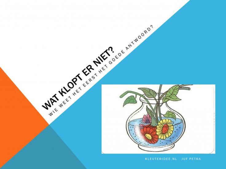 Digibordles kleuters 1: Wat klopt er niet, kleuteridee.nl Visuele discriminatie en taalontwikkeling / What's wrong, free powerpoint download for preschool