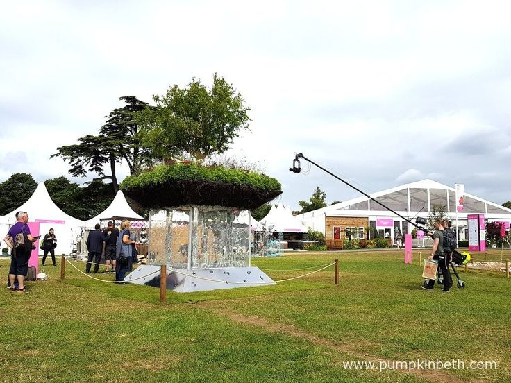 Miracle/Elements of Life was designed by Bill Wilder, and built by Wilder Gardens. This Conceptual Garden was awarded a Gold Medal and the prestigious title of Best Conceptual Garden, at the RHS Hampton Court Palace Flower Show 2017.