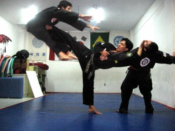 Hapkido - combines both Tae Kwon Do & Aikido & Judo martial arts techniques: