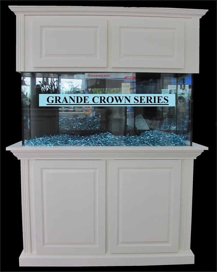 Best 25 cheap fish tanks ideas on pinterest tank tank for Fish tank decorations cheap