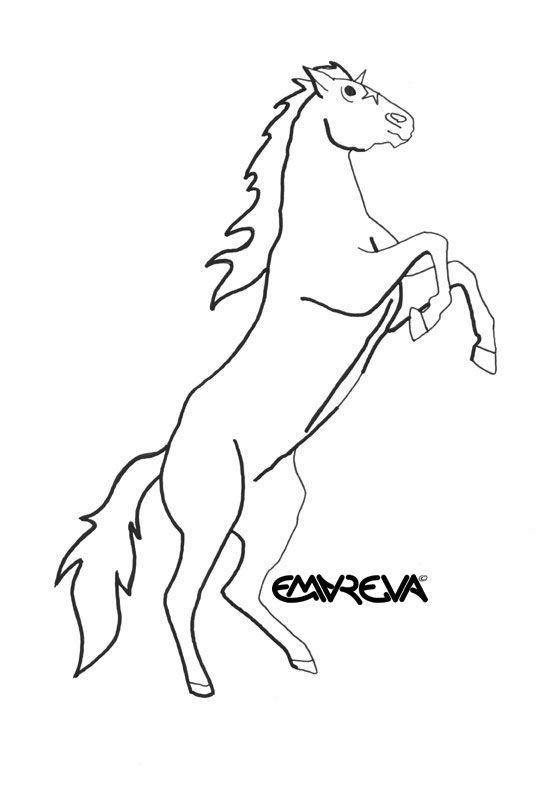 the 25 best jeux cheval gratuit ideas on pinterest léopard
