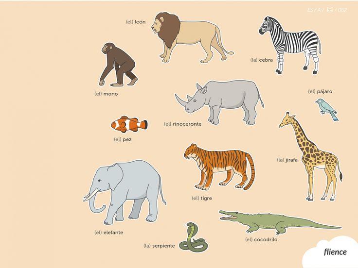Animals-savanna_002_es #ScreenFly #flience #spanish #education #wallpaper #language