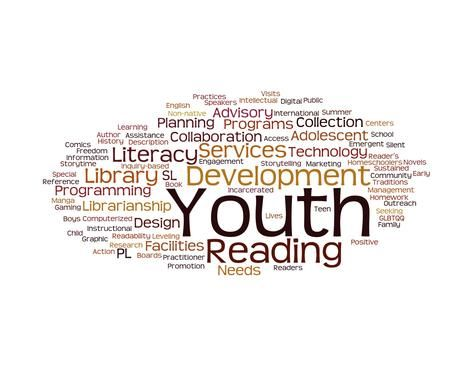 Youth Services Librarianship:A Guide to Working with Young People in School and Public Libraries
