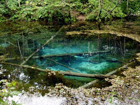 神の子池【北海道】 : 日本国内の死ぬまでに一度は行きたい観光名所 - NAVER まとめ