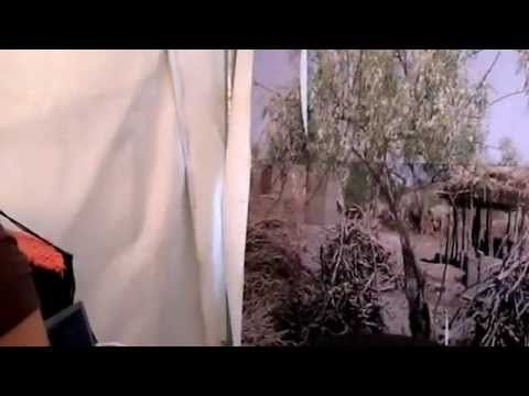 Erfoud 2012:Les multiples avantages du Moringa Oleifera - YouTube