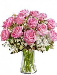 růžové růže - rozvoz květin
