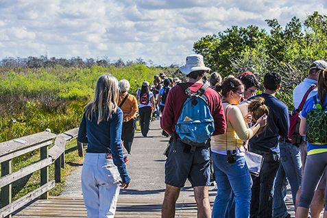 Tourism to South Florida National Parks Creates $206 Million in Economic Benefit and Over 2700 Jobs