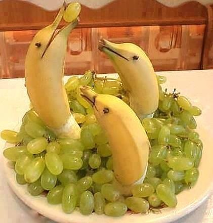 Dolphin Fruit