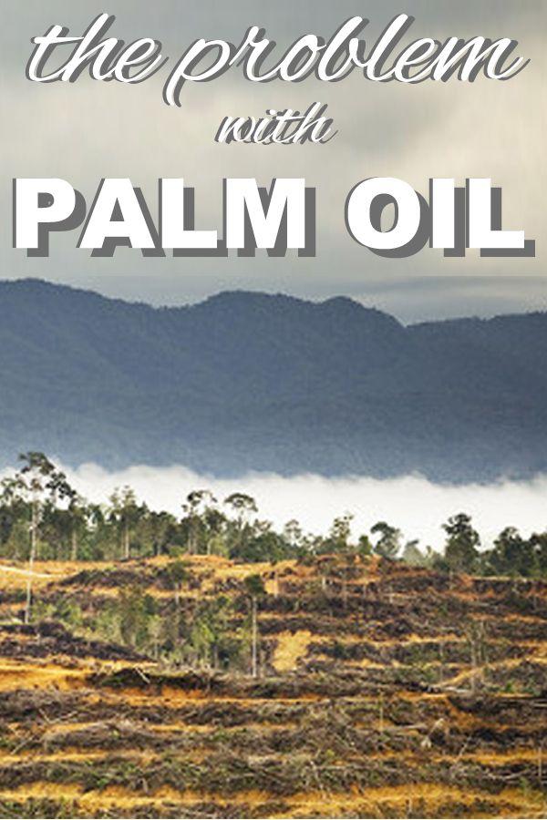 the problem with palm oil from www.goingzerowaste.com