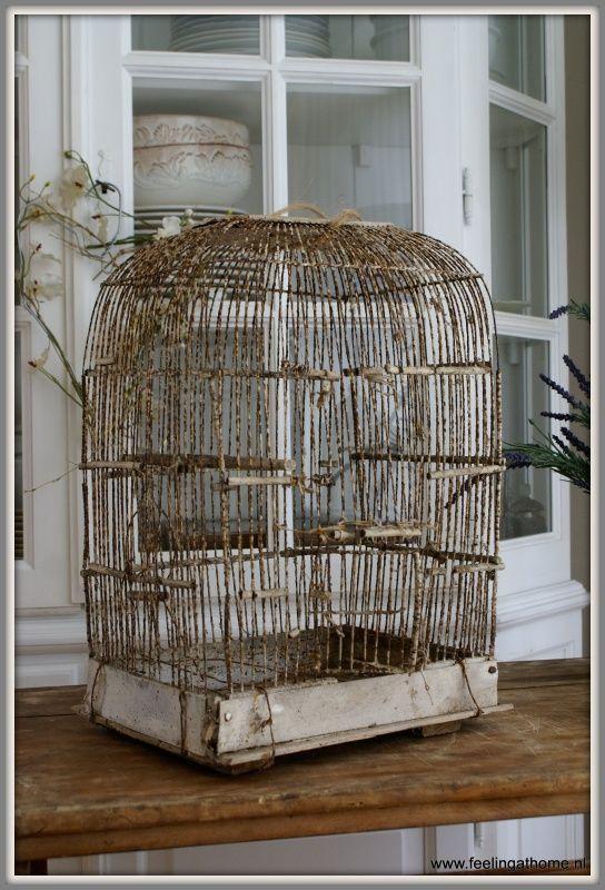 Verweerde vogelkooi