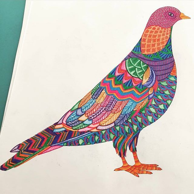 Partilhado Com Instagrab Colourful BirdsArt CornerSweet NothingsJohanna BasfordColoring BookPigeonColored PencilsAnimal KingdomZentangle