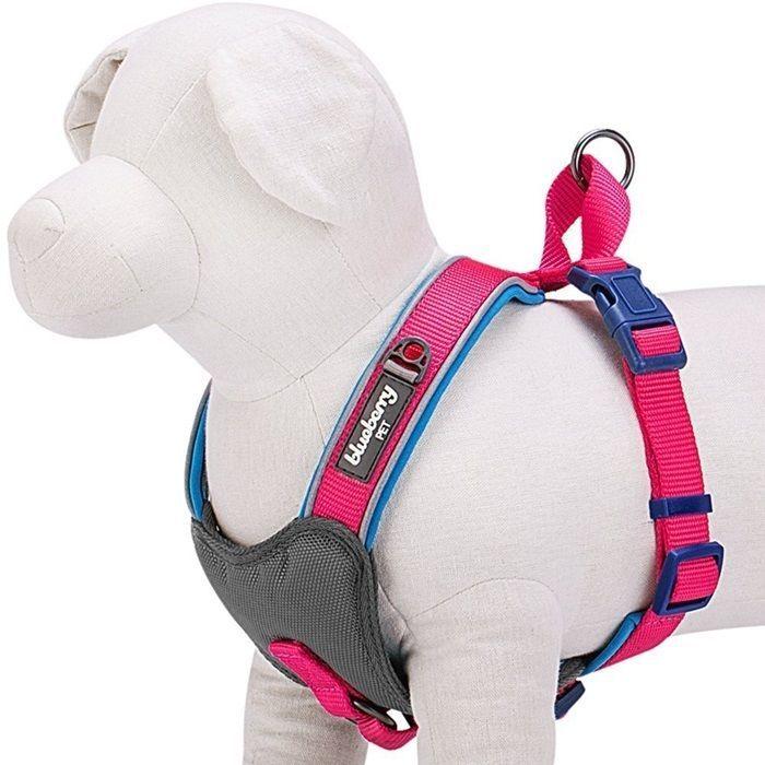 Fluorescent Pink Padded Dogs Harness Vest Neoprene No Pull Medium, Blueberry #BlueberryPet