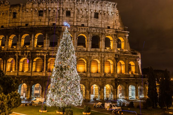 Italian Christmas Tree   Christmas tree at the Colosseum (just one Christmas tradition in Italy ...