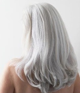 65 best hairstyles for gray hair images on pinterest white hair confident and going gray