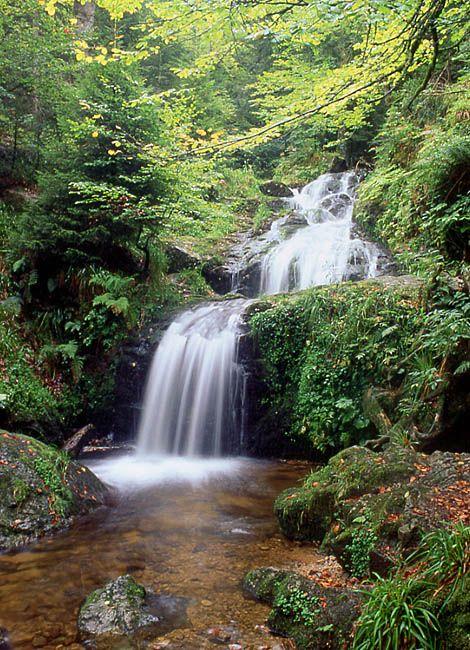 toutes les cascades vosges, ici cascade Charlemagne Retournemer #tourisme #campingcar