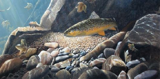 October Brownie by David Miller Limited Edition print A3: £70.00 A2: £90.00