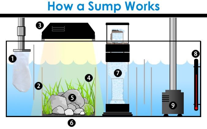 "One of the most frequently asked questions in the reef aquarium hobby is ""What is a sump?"" Much of this confusion stems from the synonymous use of the words sump, wet/dry filter and refugium. Technically all three are sumps by definition, which simply means a reservoir or container of water. Check out this diagram to find out the differences and similarities of sumps, refugiums and wet/dry filters."