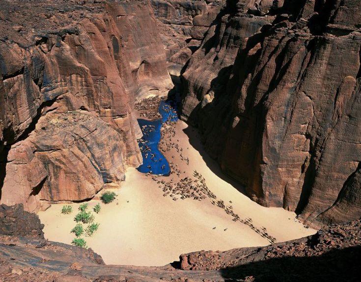 Schlucht von Archei (Tschad, 2004): Die Erosion ließ im Ennedi-Gebirge...