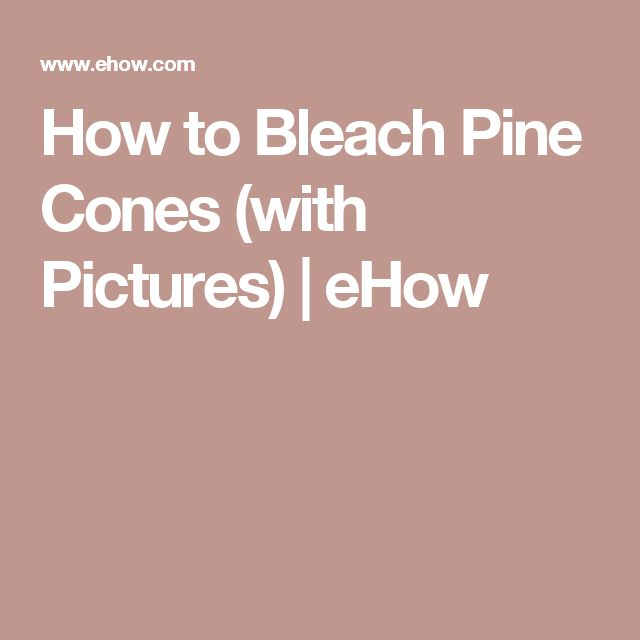 How to Bleach Pine Cones (with Pictures) | eHow
