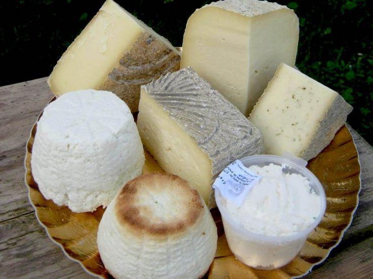 PlatFerma | Brânzeturi artizanale după rețete italienești: Asociația Curtea Culorilor | O parte din felurile de brânză artizanală http://platferma.ro/branzeturi-artizanale-asociatia-curtea-culorilor/