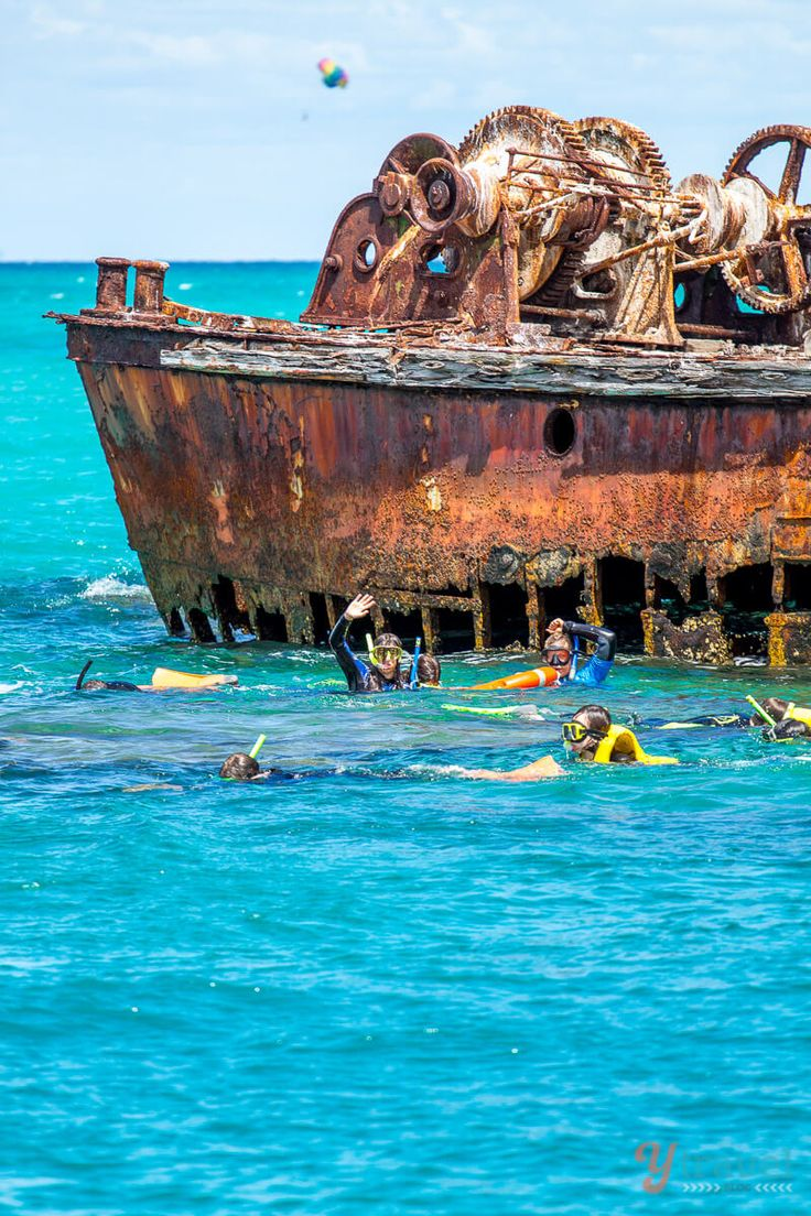 Snorkeling the Tangalooma Wrecks on Moreton Island, Queensland, Australia