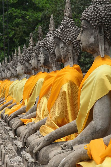 In Thailand, yellow robes are considered auspicious as the bright yellow flower, cassia fistula, is the national symbol. Reminiscent of light (or enlightenment), it is the symbolic color of Buddhism. Yellow is also considered the Thai royal color, and it is the Monday color, on which the King's birthday falls. (Thailand has an official color for each day of the week, though fashion doesn't strictly follow the rule anymore.)
