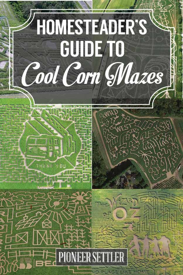 Are These The Coolest Corn Maze Ideas Ever | Fun Party Ideas and Activities by Pioneer Settler at http://pioneersettler.com/cool-corn-maze-ideas/
