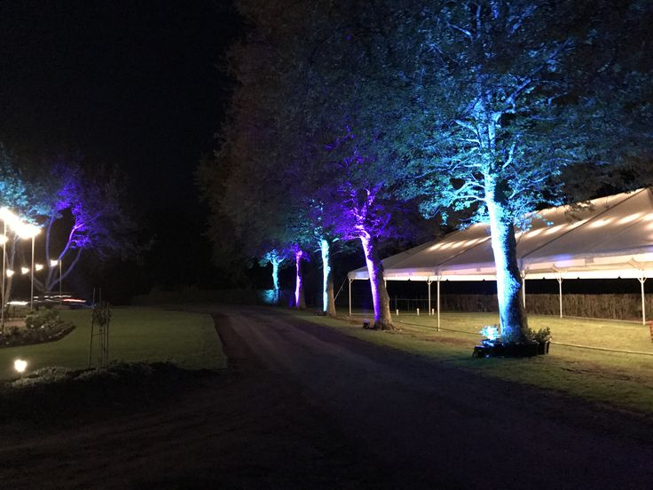 Outdoor lighting (especially in summer) can totally transform a space, add some indoor-outdoor flow #wedding #lighting #outdoors
