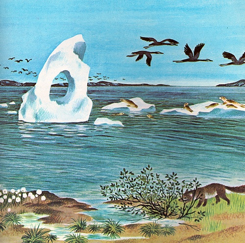 Stories from Nature, by Jane Werner Watson, illustrated by Gerda Muller (1973)