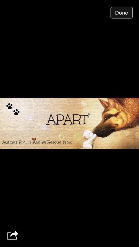 Aunties Prairie Animal Rescue Team (APART) in Luseland, Saskatchewan FB link on http://www.bestcatanddognutrition.com/roger-biduk/canadian-animal-rescues-shelters/ Roger Biduk