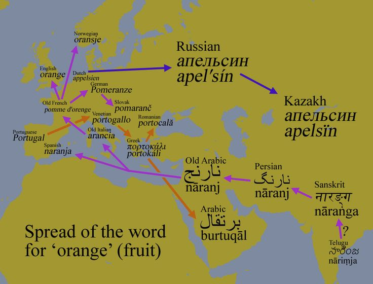 Spread of the word for 'orange'.