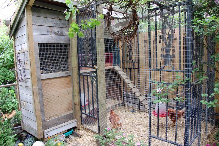 Les 25 meilleures id es de la cat gorie des poules for Jardin urbain green bar
