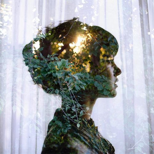 pretty: Forests, Double Exposure Photography, Inspiration, Silhouette, Beautiful, Art, Trees, Portraits, Doubleexposure