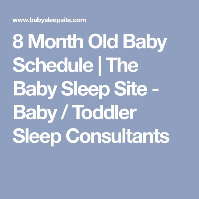 8 Month Old Baby Schedule | The Baby Sleep Site - Baby / Toddler Sleep Consultants