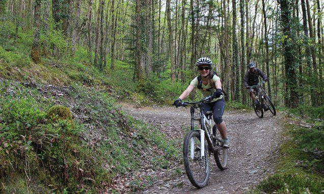 Ups and downs in Wales: A mountain-biking escape to Carmarthenshire