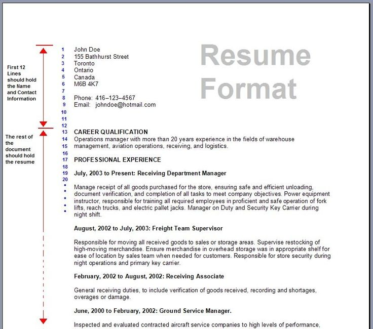 a good format of resume - Forte.euforic.co
