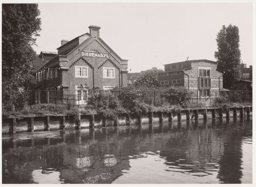 1941. View on the Dierenasiel Polderweg at the Ringvaart in Amsterdam-Oost seen from the Linnaeuskade. Photo Stadsarchief Amstedam. #amsterdam #1941 #diesenasiel #Polderweg.