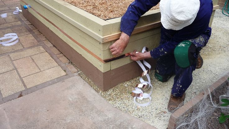 14. Applying Copper Tape.....This self adhesive tape does a great job of keeping slugs and snails out of the Ecobed.