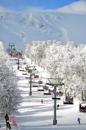 Recorre con #Despegar las montañas llenas de #nieve de #Chapelco #trip #snow #viajar #viaje #travel