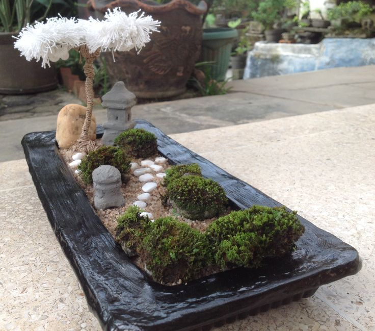 1000 images about mini zen garden on pinterest white for Small zen garden designs