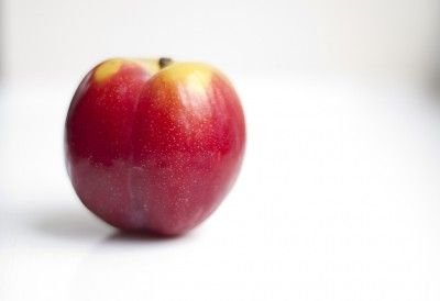 Can I Plant A Plum Pit: Tips For Planting Fresh Plum Seeds